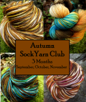 autumn sock yarn